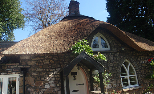 Thatch Repairs